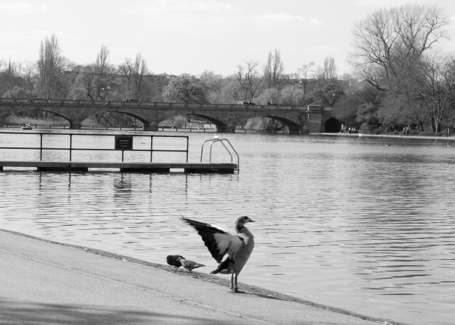 Kensington Palace (8 of 8)
